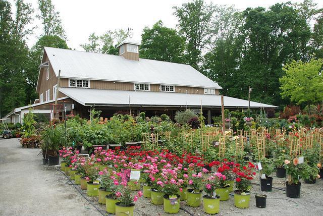 Finished exterior of a timber frame garden center