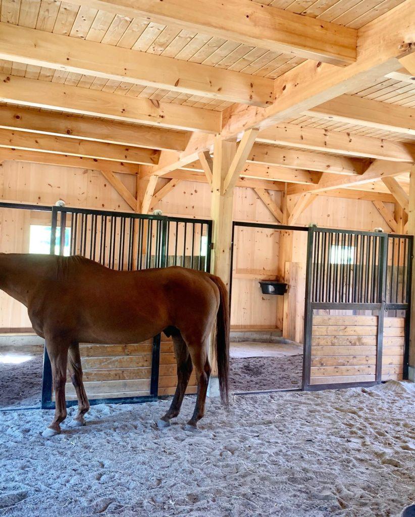 Finished timber frame barn interior